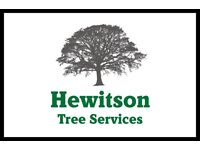 Hewitson Tree Services, Tree surgeons