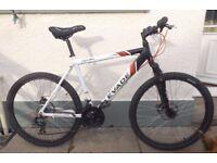 "20"" Raleigh Evade Mountain Bike"