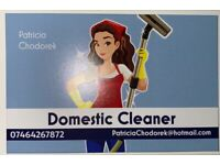 Reliable Domestic Cleaner £12h