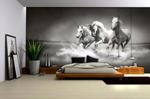 Paarden Behang Posterbehang.Paarden Behang Paarden Fotobehang Zwart Wit Vliesbehang
