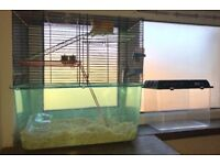 Hamster and cage and carry case