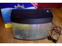 Glass Fish Tank 20 Litres