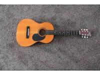 Liberty Acoustic Guitar