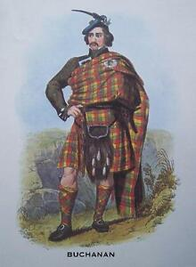 Clan Buchanan - Scottish Tartan Art Print - MATTED