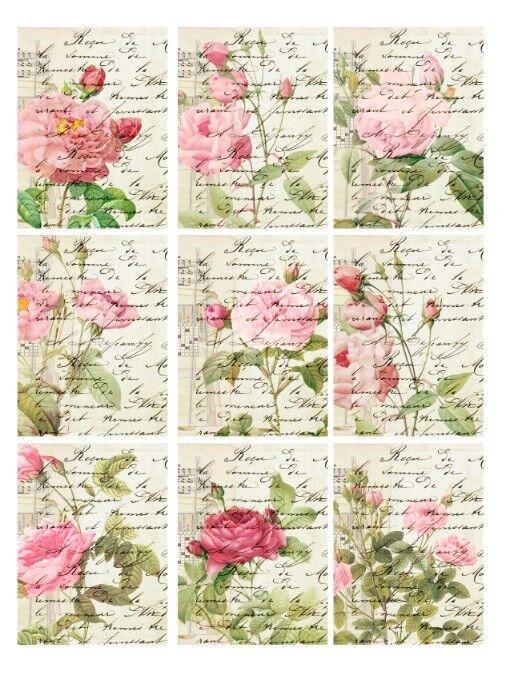 Aufkleber-Möbeltattoo-transparent-Sticker-Rosen-1147