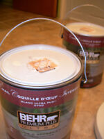 BEHR PAINT WITH PRIMER Light Yellow color