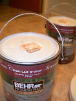 BEHR PAINT WITH PRIMER peinture