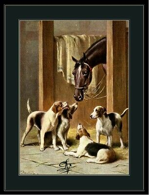 English Print Fox Hound Terrier Puppy Dog Dogs Horses Horse Art Picture Poster