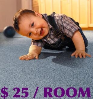 CARPET STEAM CLEANING Sunshine Brimbank Area Preview