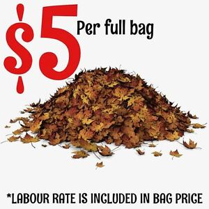 5 BUCKS a BAG==== LABOUR INCLUDED Property Clean up