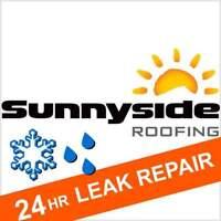 Leaky Roof? [IMMEDIATE SEALING/REPAIR]