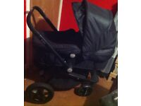 Tote buggy