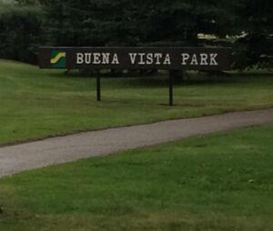 REDUCED    Buena Vista 25' Infill