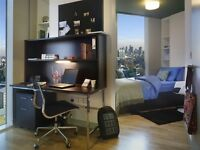 Studio flat in Pentonville Road, London