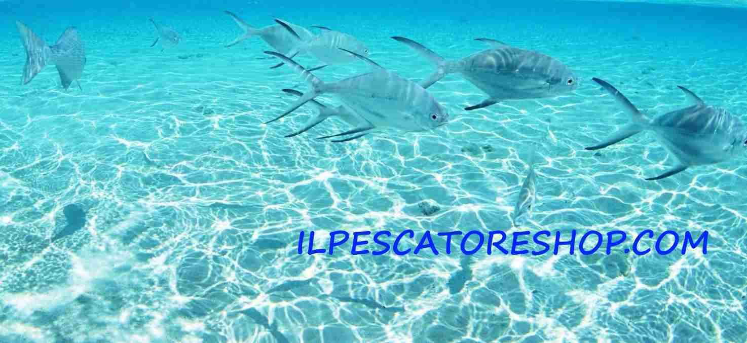 IL-PESCATORE-SOPRA-E-SOTTO-IL-MARE