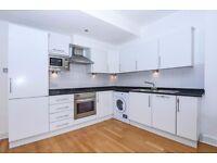 AVAILABLE ASAP - Huge 1 bedroom on Rossoman Street, 10 mins from Angel, furnished/unfurnished