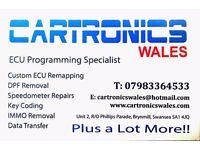 Custom Remaps..DPF faults eliminated..Speedometer repairs..EGR removal..Diagnostics..Immobiliser..