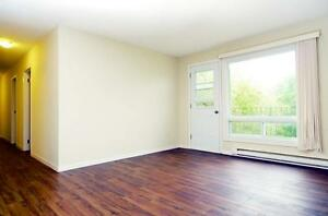 81-99 North Murray: Apartment for rent in Downtown Trenton