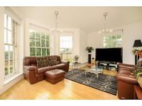 EXCEPTIONAL 2 BED 2 BATH APARTMENT IN THE FAMOUS PRINCESS PARK MANOR!! 65inch TV INCLUDED!