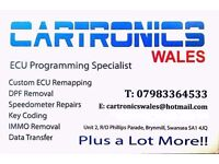 Custom Remaps..DPF faults eliminated..Speedometer repairs..EGR removal..Diagnostics..Immobiliser..