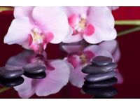 Full body professional massage in South Kensington with NEW therapist