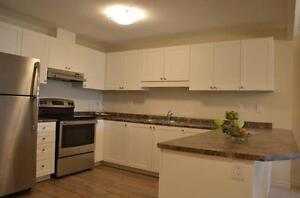 Fallowfield Towers IV - The Larch Apartment for Rent Kitchener / Waterloo Kitchener Area image 11