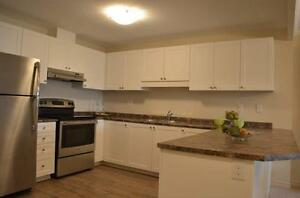 Fallowfield Towers IV - The Aspen 2 Apartment for Rent Kitchener / Waterloo Kitchener Area image 11