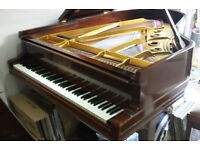 Steinway & Sons Model A Grand Piano restored lovely instrument Rosewood c1900