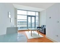 Emaculate 1 bedroom property with gym and conceirge.