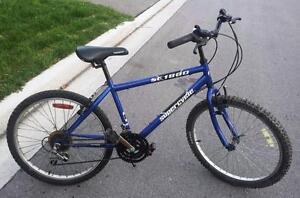 """Mountain Bikes For Sale, 24""""WHEELS ALUMINUM RIMS MOUNTAIN BIKES,"""
