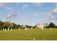 Cricket Umpire Needed - Sun 10th Sept - Parham House