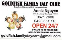 Goldfish Family Day Care Blacktown Blacktown Area Preview