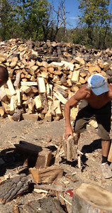 MIXED FIREWOOD FOR SALE Assorted amounts