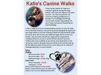 Katie's Canine Walks and services