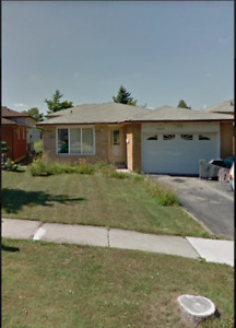 2 Bedroom Basement Apartment with separate entrance located in M