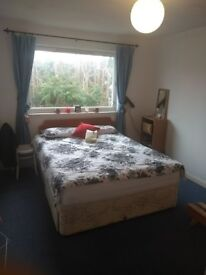 Double room for rent. Bills included. Short or longer term