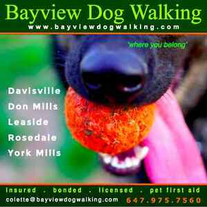 BAYVIEW DOG WALKING.com  Rosedale & Summerhill