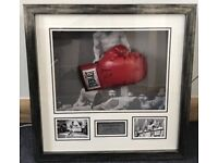 Framed Muhhamed Ali Hand Signed Gloves
