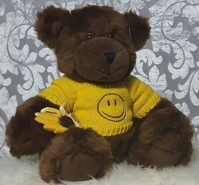 Proflowers Brown Teddy Bear Plush Yellow Smile Removable Sweater Daisy 11 Inch