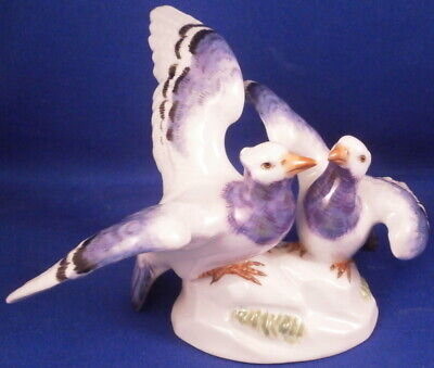 Great Meissen Porcelain Pigeon Pair Bird Figurine Porzellan Vogel Figur Figure