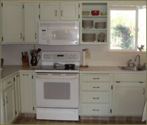 STOVE STAINLESS STEEL/WHITE - GLASS, GAS, COIL TOP