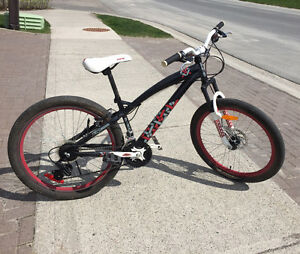 "24"" Hybrid Bike"
