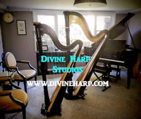 Music Lessons  HARP & PIANO in Dundas!