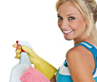 EUROPEAN CLEANING SERVICES  FROM  $19.99