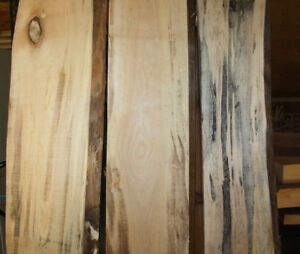 Spalted Lumber