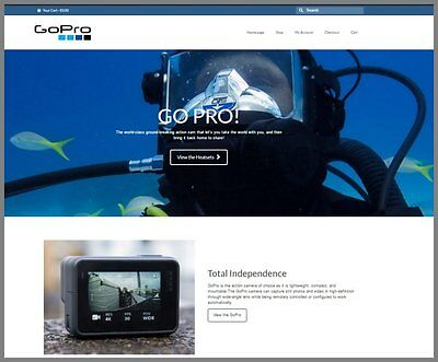 Go-pro Cameras Websiteupto 113.92 A Salefree Domainfree Hostingfree Traffic