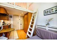 Lovely Split Level Studio in Pimlico for Short or Long let £375 All Utility Bills included