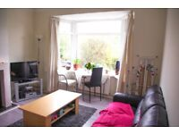 Lovely Double Room in Quiet Professional Houseshare near Freeman Hospital