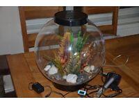 Bio Orb Aquarium