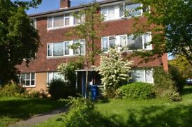 Great 3x bedroom flat available to rent in central Herne Hill SE24